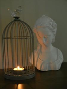 buste-derrier-cage-avec-bou