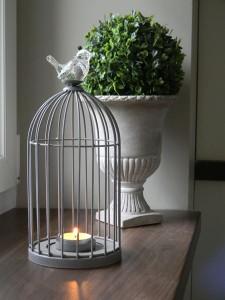 cage-bougie-buis-oiseau-ver