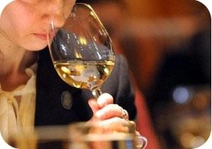 dégustation de vin oenologie cours